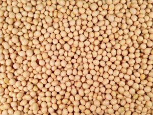 aps_soybeans