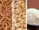 Organic Kamut® Khorasan Wheat