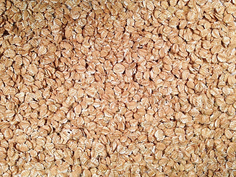 organic rolled spelt grain place foods